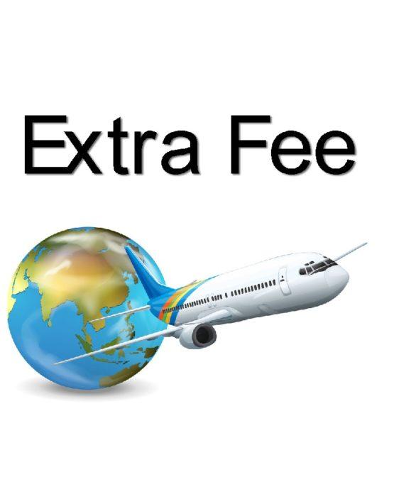 extra fee 3